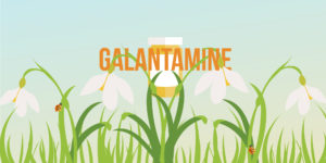 Treating Alzheimer's Disease with Galantamine (RAZADYNE®)