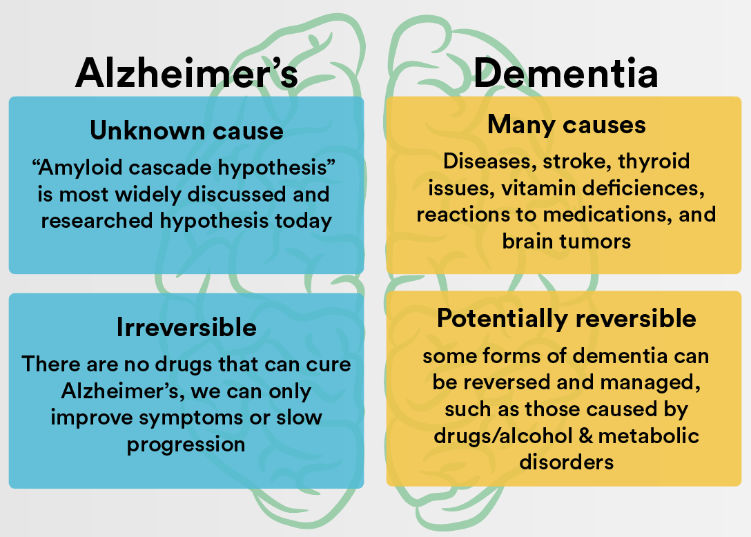dementia vs alzheimer's: what is the difference?
